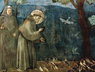 sao-francisco-prega-aos-animais.jpg